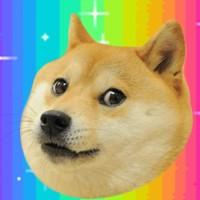Such post. Very wow. Like much. #doge #rainbow #dog #meme