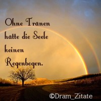 """Ohne Tränen hätte die Seele keinen Regenbogen. #Regenbogen #Sprüche #Zitate #Dreamylis ~ Warum #Dreamylis? Weil alle die meine Seite mögen und kleine """"Fans"""" sind Dramylis heißen. ^^"""