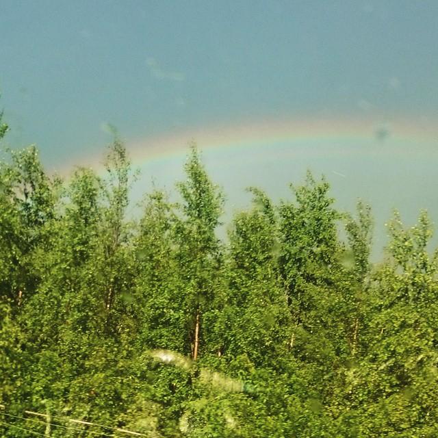 #epätoivoinenyritys #sateenkaari #rainbow #nature #averybadpic #Finland #Summer #aftertherain